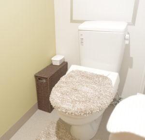 清潔 な女性も安心 の トイレ です。