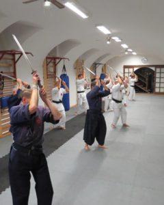 小太刀・護身術, 日子流体術、練馬、古武術